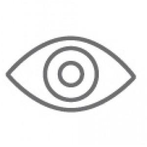 Syn/øyne